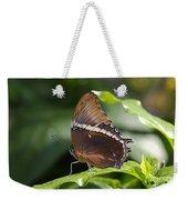 Brown Beauty Weekender Tote Bag