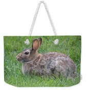 Brown Bunny In Grass Weekender Tote Bag