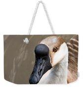 Brown Eye Weekender Tote Bag
