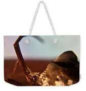 Brown-eyed Bug Weekender Tote Bag