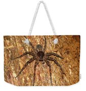 Brown Fishing Spider Weekender Tote Bag