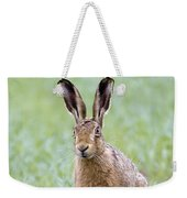 Brown Hare Weekender Tote Bag