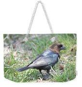 Brown-headed Cowbird 2 Weekender Tote Bag