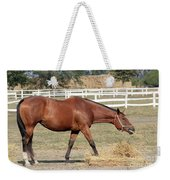 Brown Horse Eating Hay Ranch Scene Weekender Tote Bag
