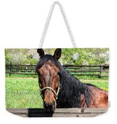 Brown Horse In A Corral Weekender Tote Bag