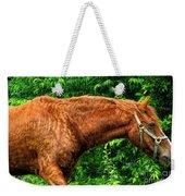 Brown Horse In High Definition Weekender Tote Bag