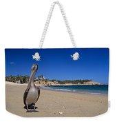 Brown Pelican At The Baja Weekender Tote Bag