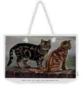 Brown Tabby And Orange Tabby Weekender Tote Bag