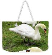Bruges Swans 2 Weekender Tote Bag