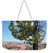 Bryce Canyon Fairyland Point Portrait Weekender Tote Bag