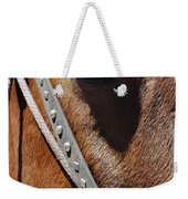 Bryce Canyon Horse Portrait Weekender Tote Bag