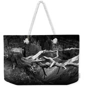 Bryce Canyon Tree Stump On A Ridge Weekender Tote Bag