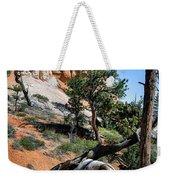 Spires On Navajo Trail Weekender Tote Bag