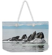 Bubble-net Group With Mountains In Alaska Weekender Tote Bag