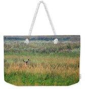 Buck In Field Weekender Tote Bag