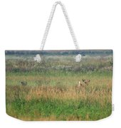 Buck Running In Field Weekender Tote Bag