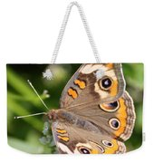 Buckeye Butterfly Square Weekender Tote Bag