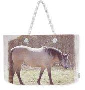 Buckskin Horse  Weekender Tote Bag