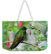 Buff-tailed Coronet Weekender Tote Bag
