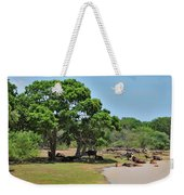 Buffalo At Hambantota Weekender Tote Bag