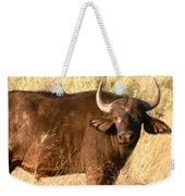 Buffalo Encounter Weekender Tote Bag