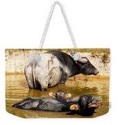 Water Buffalo Family Portrait Weekender Tote Bag