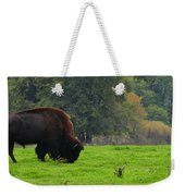 Buffalo In Spring Grass Weekender Tote Bag
