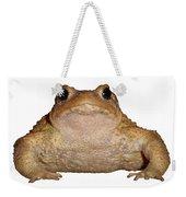 Bufo Bufo European Toad Isolated Weekender Tote Bag