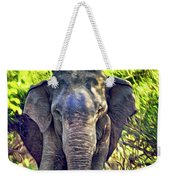 Bull Elephant Threat Weekender Tote Bag
