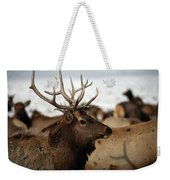 Bull Elk At Hardware Ranch Weekender Tote Bag