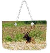 Bull Elk At Rest Weekender Tote Bag
