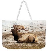 Bull Elk Calls Out Weekender Tote Bag
