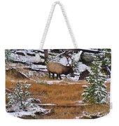 Bull Elk Feeding In Winter Weekender Tote Bag