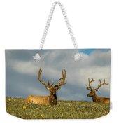 Bull Elk Friends For Now Weekender Tote Bag
