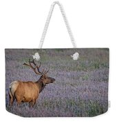 Bull Elk In Velvet Weekender Tote Bag