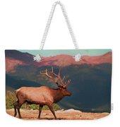Bull Elk On Trail Ridge Road Weekender Tote Bag