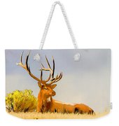 Bull Elk Resting In The Grass Weekender Tote Bag