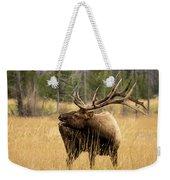 Bull Elk Sideview Weekender Tote Bag