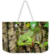 Bull Frog On A Log Weekender Tote Bag