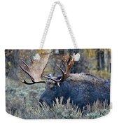 Bull Moose 02 Weekender Tote Bag