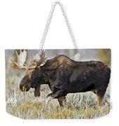 Bull Moose Crossing The Sage  Weekender Tote Bag