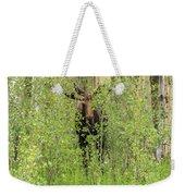 Bull Moose Guards The Aspen Weekender Tote Bag