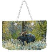 Bull Moose In The Evening Weekender Tote Bag