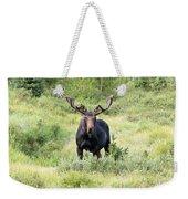Bull Moose Stands Guard Weekender Tote Bag