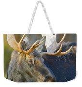 Bull Moose Up Close Weekender Tote Bag