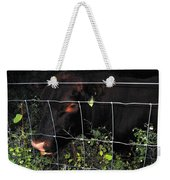 Bull Nibbling On Snowberries Weekender Tote Bag