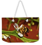 Bumblebee On A Hardy Orange Blossom 002 Weekender Tote Bag