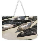 Bunch Of Harbor Seals Resting On A Beach Weekender Tote Bag