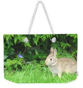 Bunny In Repose Weekender Tote Bag