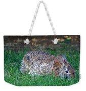 Bunny In The Backyard Weekender Tote Bag